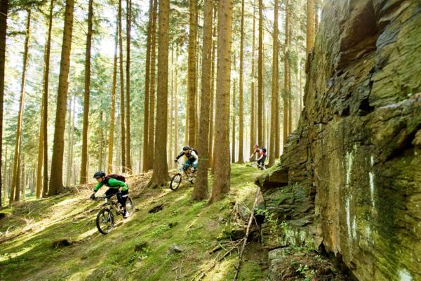 Mountainbike-Tour Stoneman Miriquidi MTB Abenteuer Erzgebirge Ore Mountains Trailcenter Rabenberg Felsen klein